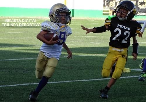Víctor Ricardo López (9) destacó con tres anotaciones en la victorias de Aguilas de Saltillo en Hormiguitas.