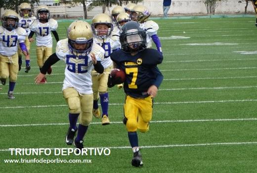 Gerardo Orta, jugador de Lobos se escapa hasta las diagonales para lograr una anotación en la categoría Hormiguitas.