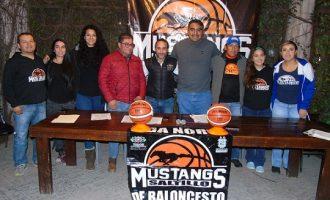 Mustangs Saltillo
